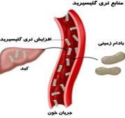 سطح کلسترول خون وسطح کلسترول خون بالا